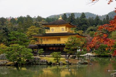 定番スポットを巡る京都・紅葉の旅 ⑤   (金閣寺)
