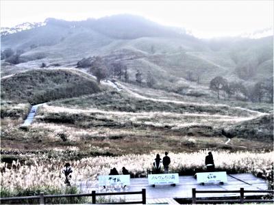 2019年秋の兵庫を行く、ススキの砥峰高原からバラの須磨離宮公園へ!