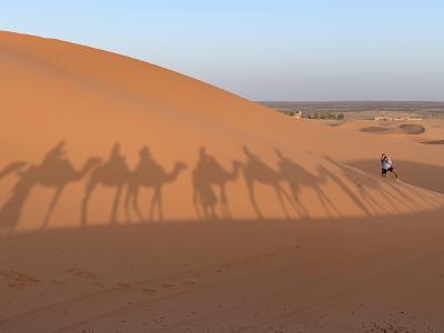 魅惑のモロッコ 第5日目(9月14日)