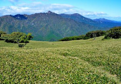 鈴鹿の入道ヶ岳(906m)