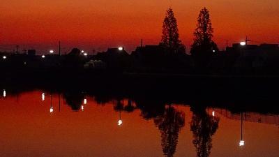 早朝散歩 鴻池第一公園の日の出は無理でした 上巻。