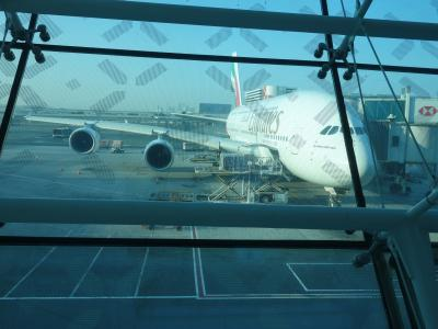 エミレーツのA380-800に乗る。DXB-BCN EK185便。寝るしかない。