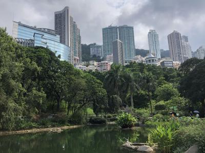 激動の香港を食べ歩き旅(2019年香港③)~湾仔から上環まで街歩き~