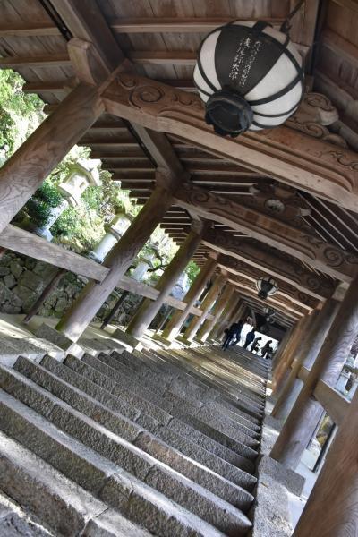 古都、奈良。日本の良さを再確認。