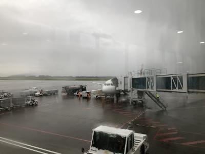 中国東方航空 MU2019便 上海浦東国際空港から富士山静岡空港