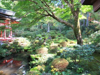 秋の京都大原で庭園ひとり占め~静寂の世界