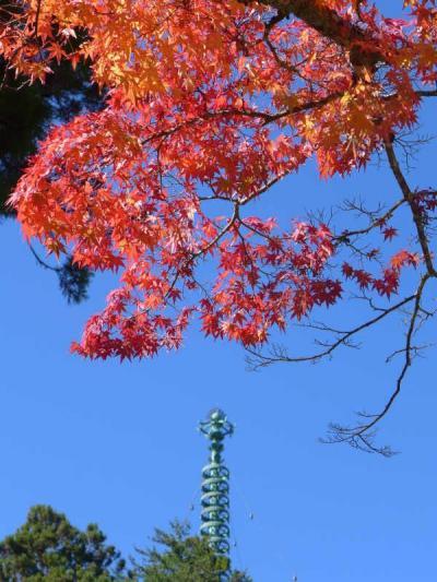 世界遺産の紅葉!高野山へ