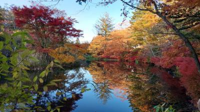 旧軽井沢「ホテル音羽ノ森」に泊まり紅葉を楽しむ1泊2日(1)