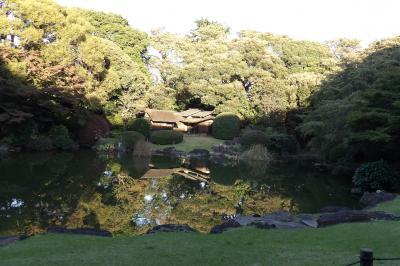 紅葉はまだの日本庭園