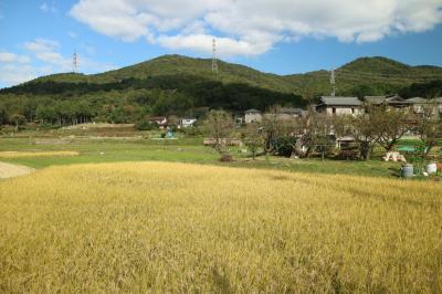 春日井三山
