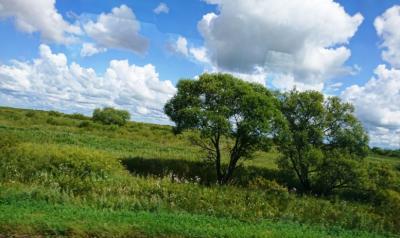 イワノフカ村・アムール州・ハバロフスク慰霊と交流の旅
