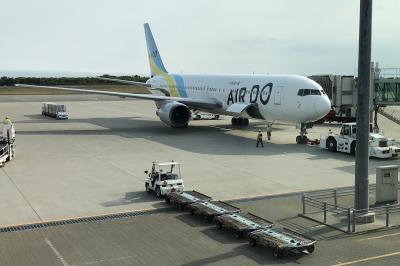 陸海空路で函館旅行してきたお話 10 飛行機で東京へ の部