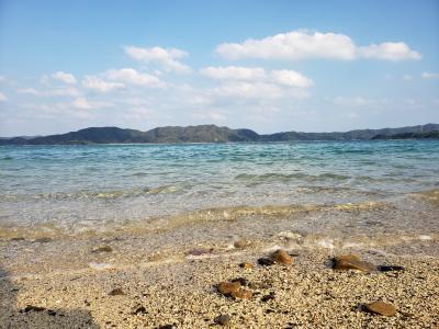 子連れで鹿児島&奄美大島旅行 4日目