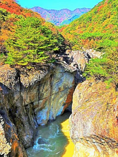 龍王峡-3 虹見橋-右岸遊歩道-むささび橋を渡り ☆むささび茶屋/公衆トイレも