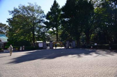 新宿御苑・晩秋散歩