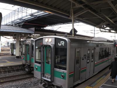 避けては通れぬ東北乗り鉄の定番。701系電車全バージョンに1日で乗りまくってみた。(その1)