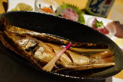 神戸出雲FDA就航、ということで初・島根県