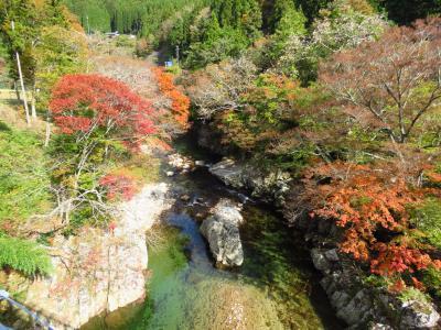 奥矢作ダムWRCラリーコース~茶臼山の紅葉
