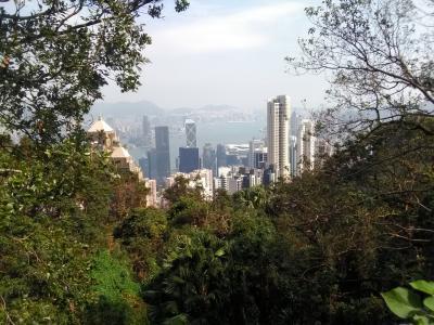「香港&桂林6」香港半日観光☆ビクトリアピークからの下山は徒歩で!かつてのメインストリート・Old Peak Load をゆく