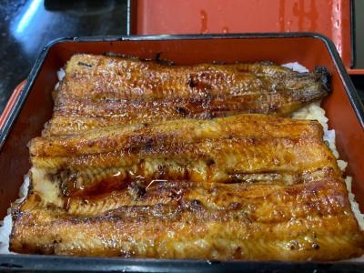 成田山の紅葉は・・やはりまだ早かったけど鰻は最高です!