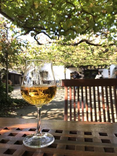 大人の遠足ー日本のワインを思う存分味わう