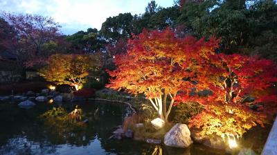 土日は神戸市にある「しあわせの村」でお泊まり♪