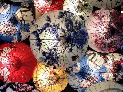 おいしい上海を食べに行こう! ~家族そろって上海ガニと小籠包で弾丸満腹の旅~