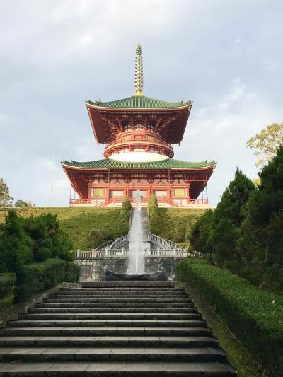 2019年11月 成田山新勝寺参拝
