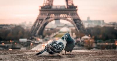 パリ1日観光コース<パリ出身者がオススメの穴場スポットがたくさん!>