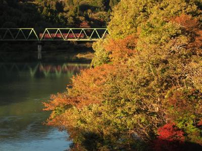 わたらせ渓谷鐵道と紅葉撮影旅!