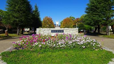 尼崎市 西武庫公園に咲く花 その1。