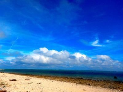 初冬の石垣島1   グルメとビーチ紀行  レンタカーでぐるり一周