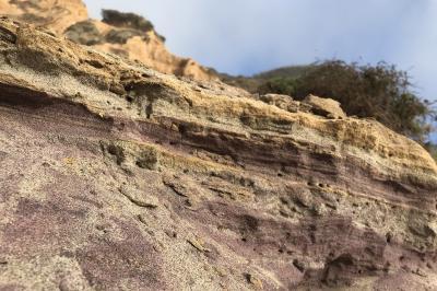 紫の砂浜を目指してロサンゼルスから1泊2日の旅