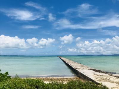 8月の黒島&石垣④