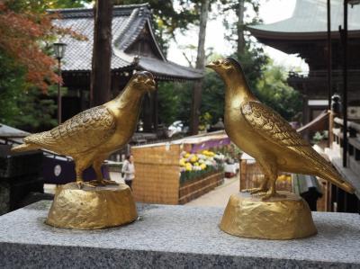 100年に一度の御開帳!!妙法寺のある滋賀・近江八幡へ