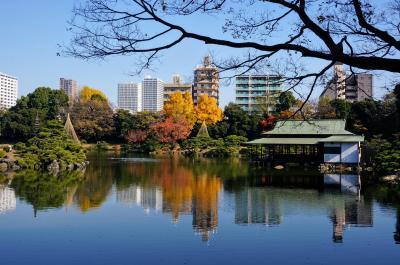 都立庭園カレンダーGET♪ 9か所都内庭園巡り ① (清澄庭園)