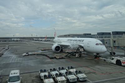 【フライト編①】福岡→成田→デリー  ~ワンワールド世界一周航空券で2ヶ月の旅