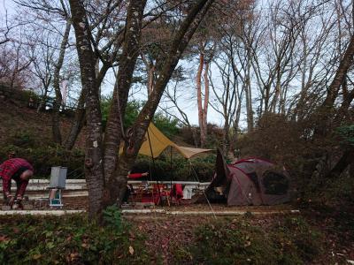 城峯公園冬桜キャンプ