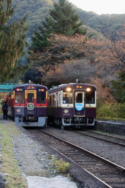 ブララブコー「紅葉を求めて、わたらせ渓谷鉄道撮り鉄旅」