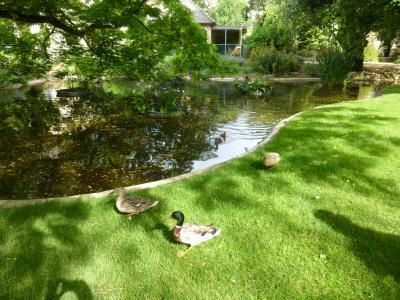 休暇でロマネスク旅 ポワティエ 3 のんびり休日 in ブロサック公園