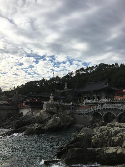 釜山アラフォー大冒険