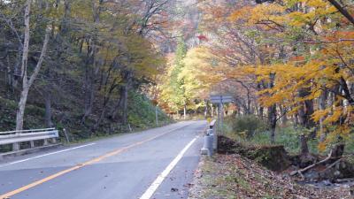 千変万化の紅葉を愛でに   西ウレ峠遊歩道&おおくら滝遊歩道