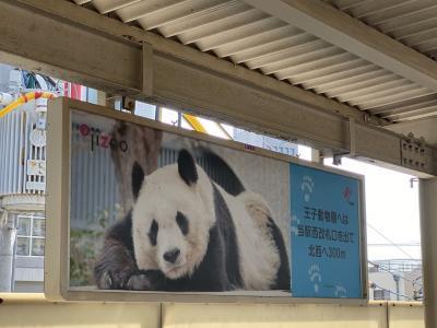 王子動物園が素敵すぎる
