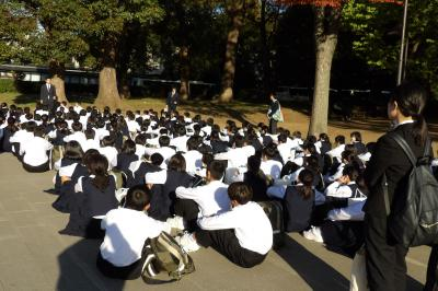 上野公園も色付く-2019年秋