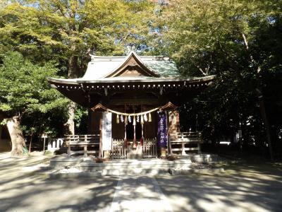 春日神社(川崎市中原区宮内4)