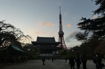 芝・増上寺を行く