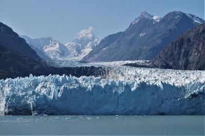 アラスカクルーズ(4)----アラスカのグレイシャー・ベイ