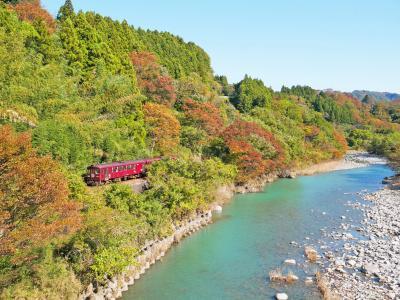 わたらせ渓谷鐵道と、ほんのり色づく紅葉。