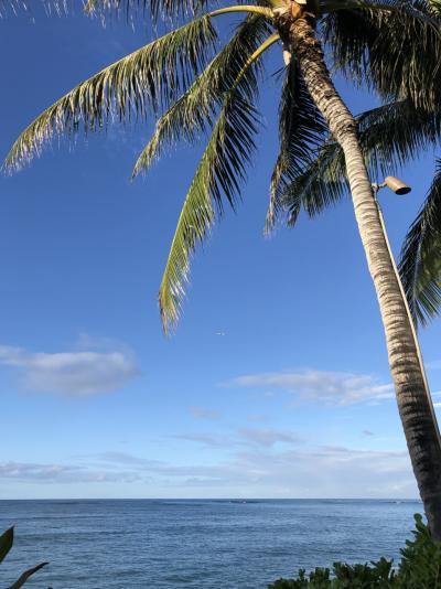 70歳母と3歳娘を連れて40歳のわたし初ハワイ!