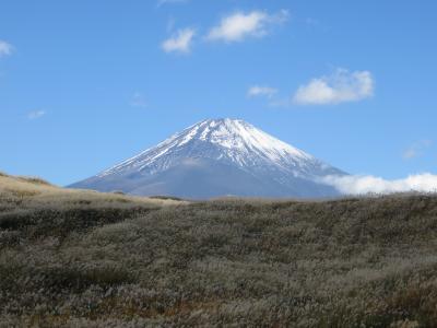 第1回富士山一周サイクリング20191115(2/3) 撤退編
